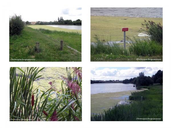 L'étang du Perray...