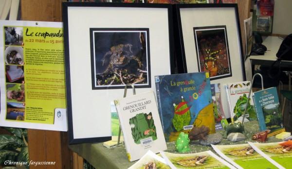 Crapauds et autres amphibiens à la bibliothèque d'Auffargis