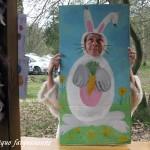 Un autre lapin