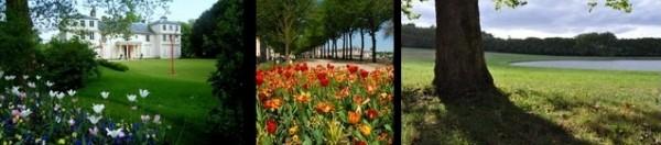 Mai-Versailles