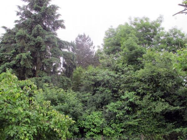 Vu de ma fenêtre