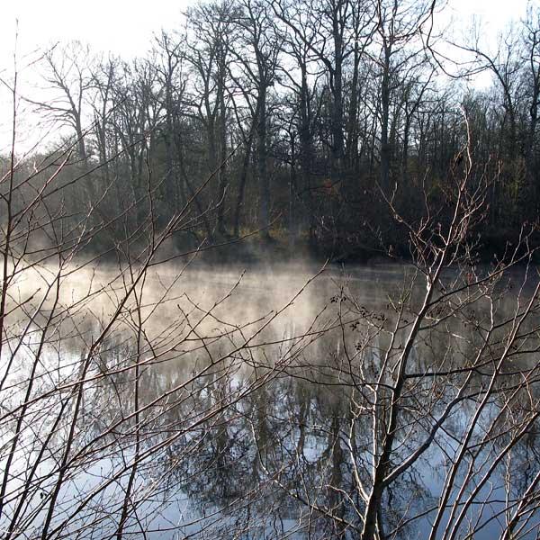 0°, petite brume, quelques korrigans :o)