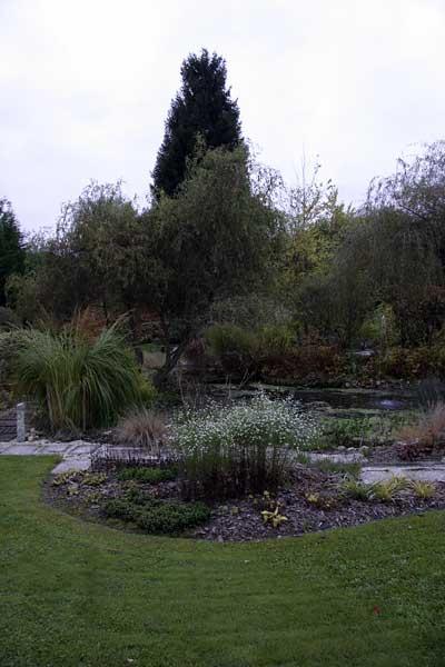 La Grenouillère, pelouse et bassin